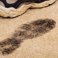 How-to-Tackle-the-Winter-Carpet-Blues
